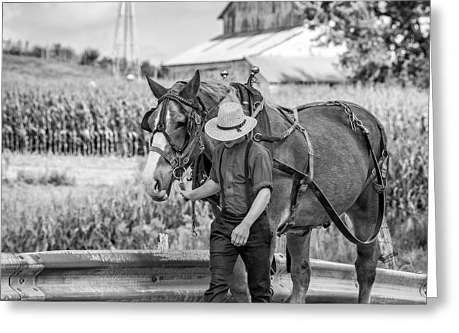 Rural Indiana Greeting Cards - The Simple Life bw Greeting Card by Steve Harrington