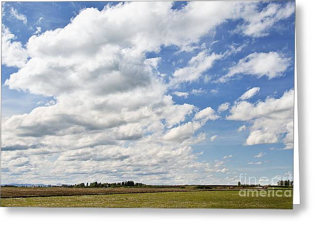 Alberta Prairie Landscape Greeting Cards - The Sky is the limit Greeting Card by Ivy Ho