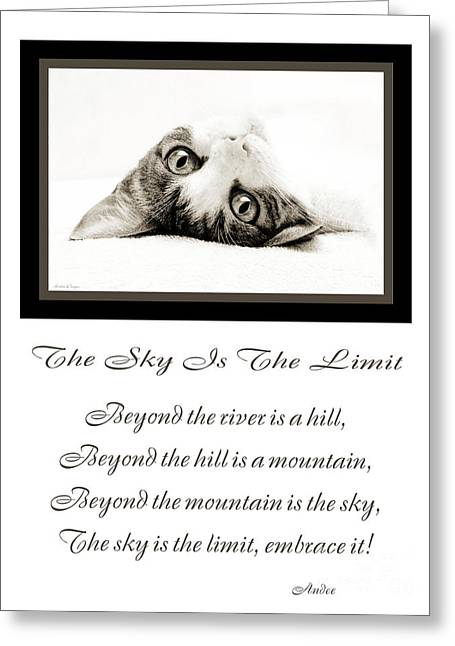Black Cat Hills Greeting Cards - The Sky Is The Limit V 3 Greeting Card by Andee Design
