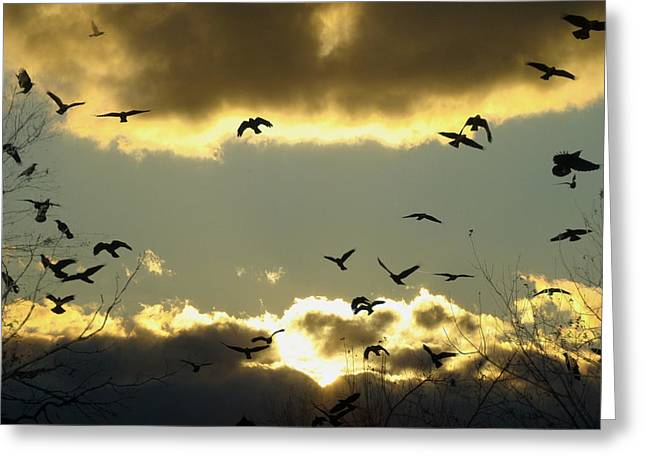 Clouds In Motion Greeting Cards - The Sky Opened Greeting Card by Gothicolors Donna Snyder