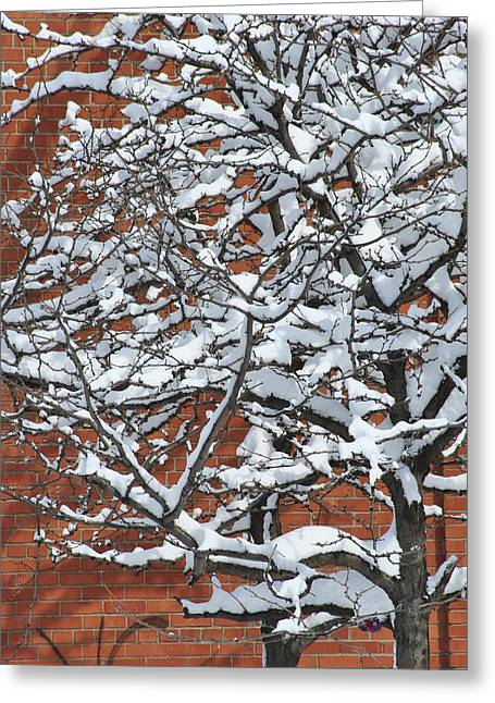 Frederico Borges Photographs Greeting Cards - The snow and the wall Greeting Card by Frederico Borges