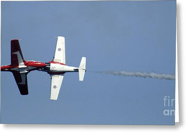 Military Aviation Photos Greeting Cards - The Snowbirds Nose To Nose Greeting Card by Bob Christopher