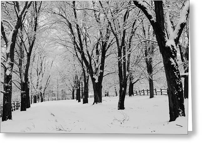 Split Rail Fence Greeting Cards - The Snowy Road Home Greeting Card by Stephen Hobbs