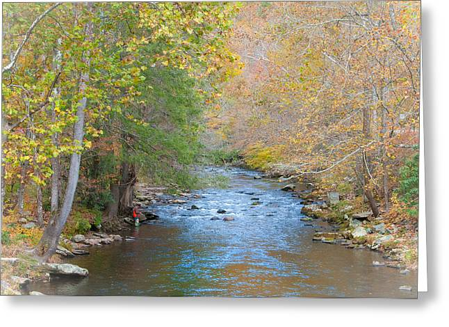 Tennessee River Greeting Cards - The Softer Side of Fall Greeting Card by Lynn Bauer