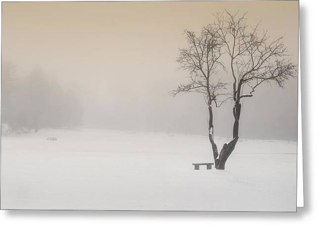 Minimalist Greeting Cards - The Solitude of Winter Greeting Card by Bill  Wakeley