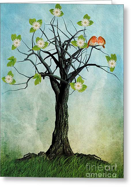 Robin Greeting Cards - The Song of Spring Greeting Card by John Edwards