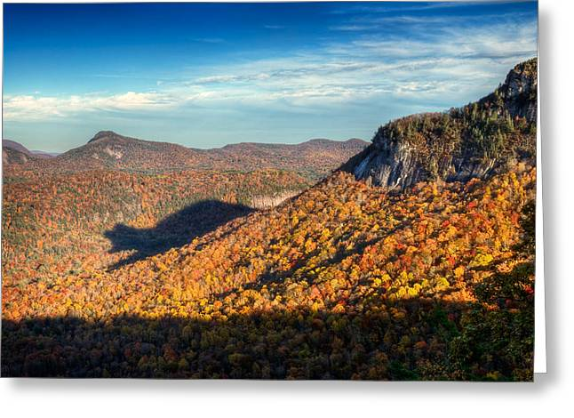 Nantahala Forest Greeting Cards - North Carolina Autumn Mountain Bear Shadow NC Greeting Card by Dave Allen
