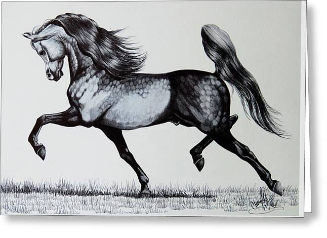 The Spirited Arabian Horse Greeting Card by Cheryl Poland