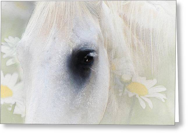 Equine Mixed Media Greeting Cards - The Spring Gift Giver Greeting Card by Georgiana Romanovna