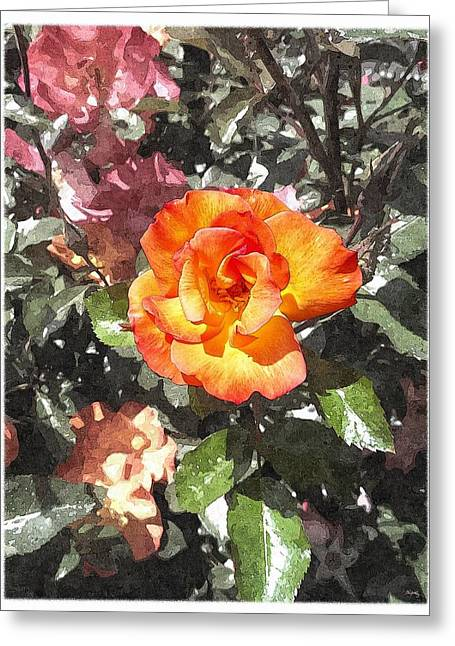 Foliage Fragrance Greeting Cards - The Spring Rose Greeting Card by Glenn McCarthy Art and Photography