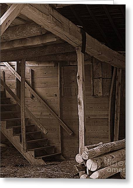Rural Indiana Greeting Cards - The Stairs Still Stand Greeting Card by Kitrina Arbuckle