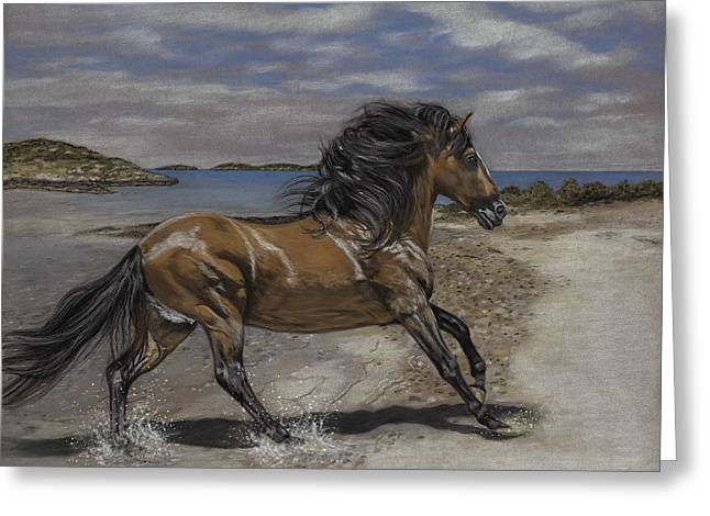 Stallion Pastels Greeting Cards - The Stallion and the Exumas Greeting Card by Terry Kirkland Cook