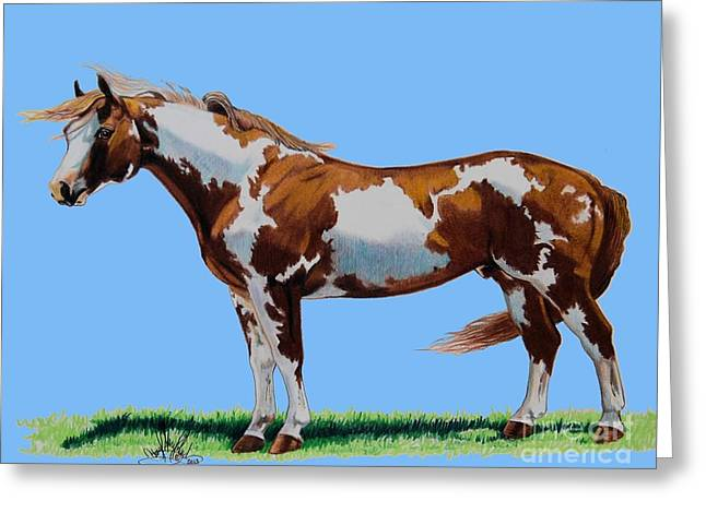 Quarter Horses Drawings Greeting Cards - MRPARRMAC-Left Side Greeting Card by Cheryl Poland