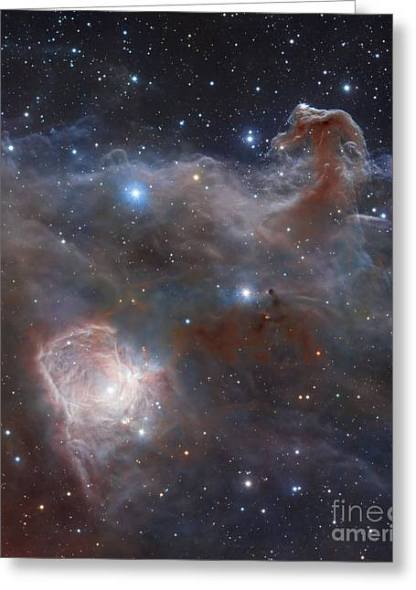Colorful Cloud Formations Greeting Cards - The Star-forming Region Ngc 2024 Greeting Card by Robert Gendler