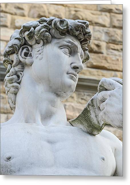 Michelangelo Greeting Cards - The statue of David by Michelangelo Greeting Card by Brandon Bourdages