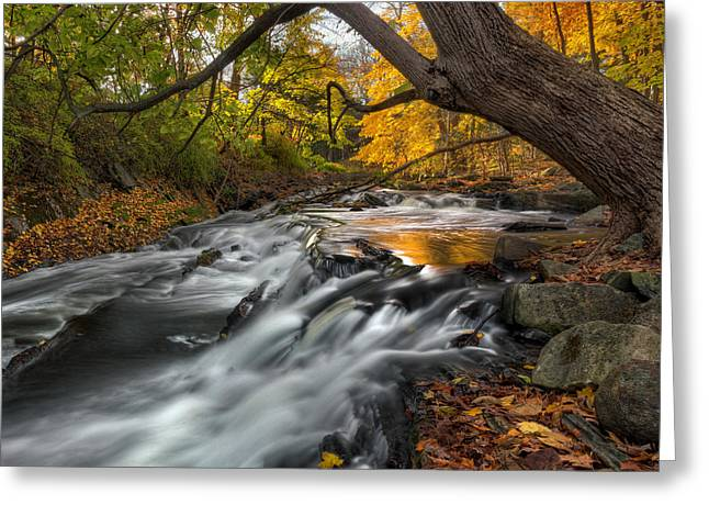 Ethereal Waterfalls Greeting Cards - The Still River Square Greeting Card by Bill  Wakeley