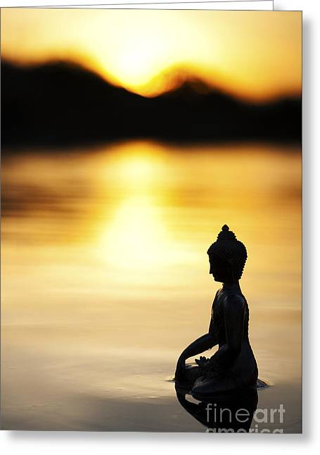 The Stillness Of Sunrise Greeting Card by Tim Gainey