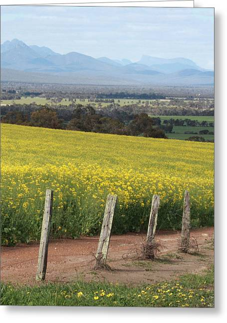 The Stirling Range Greeting Card by Kelly Jones