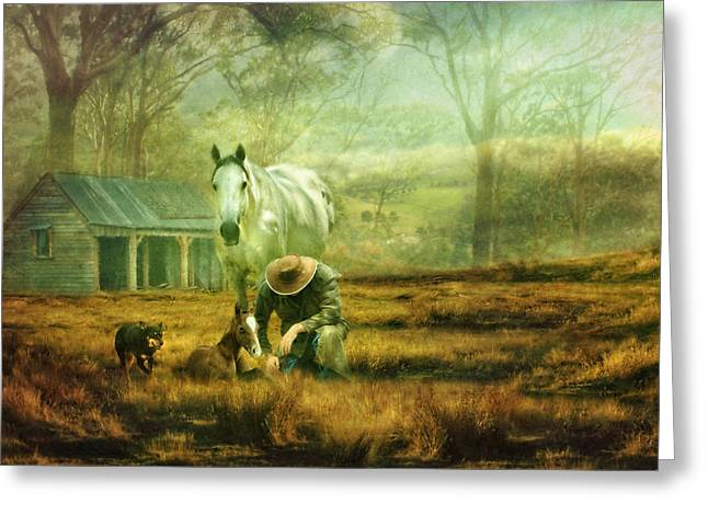 The Stock Horse Greeting Card by Trudi Simmonds
