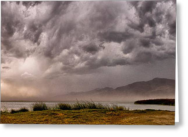 Storm Clouds Greeting Cards - The Storm Greeting Card by Cat Connor