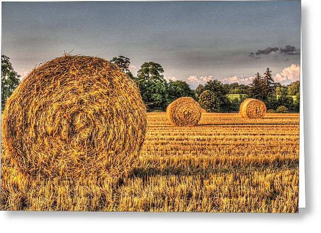 Farmers Field Greeting Cards - The Straw Bales Greeting Card by David Pyatt