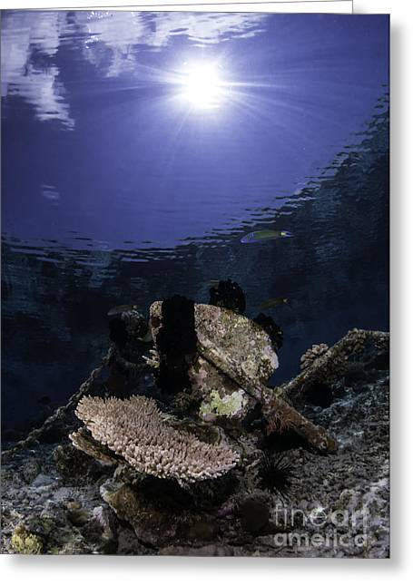Anchor Underwater Greeting Cards - The Submerged Anchor Greeting Card by Yusran Abdul Rahman