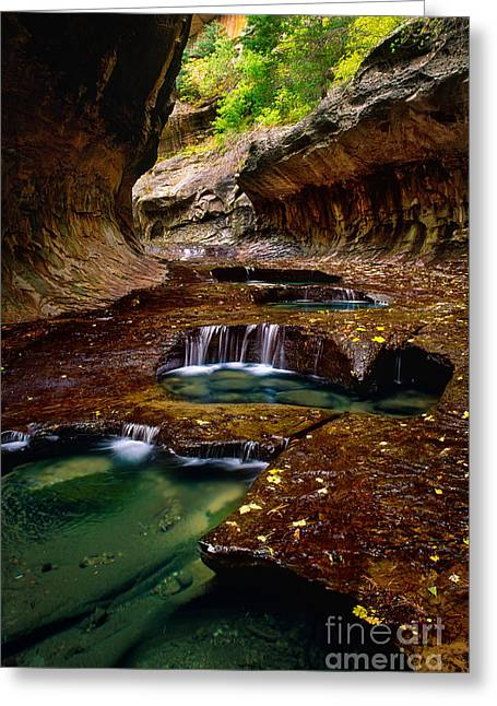 Zion National Park Photographs Greeting Cards - The Subway Greeting Card by Inge Johnsson