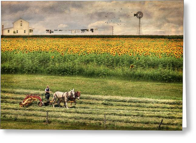 Amish Digital Art Greeting Cards - The Summer Cutting Greeting Card by Lori Deiter