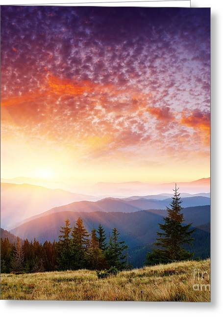 Johann Baptist Hofner Pyrography Greeting Cards - The Summer Landscape Greeting Card by Boon Mee
