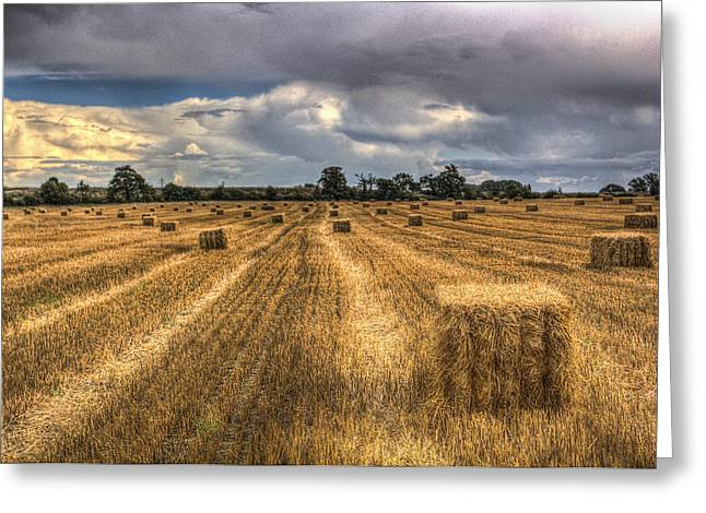 Farmers Field Greeting Cards - The Summers Day Farm Greeting Card by David Pyatt