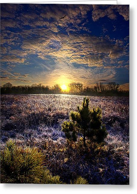 Geographic Greeting Cards - The Sun Travels Greeting Card by Phil Koch