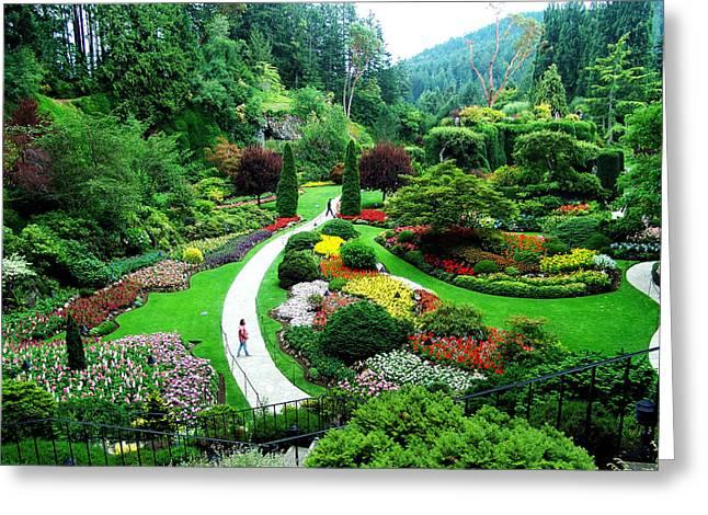 The Sunken Garden Greeting Card by Janet Ashworth