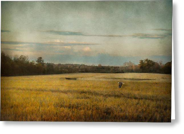 Autumn Scenes Greeting Cards - The Sunrise Hour Greeting Card by Jai Johnson