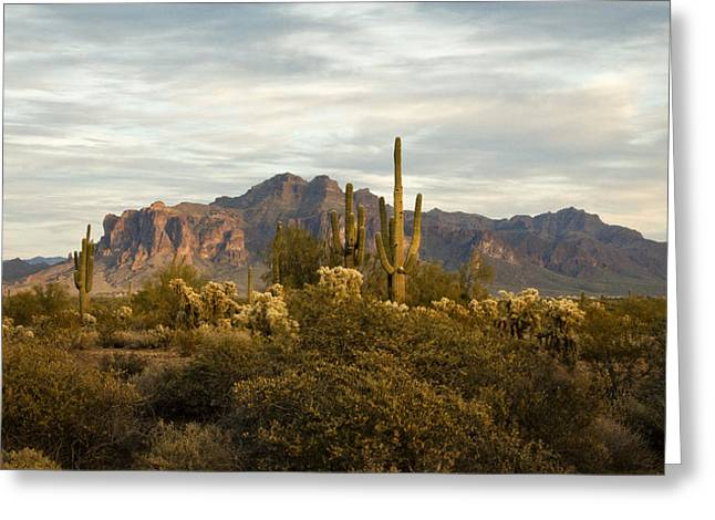 The Superstitions Greeting Cards - The Superstition Mountains Greeting Card by Saija  Lehtonen