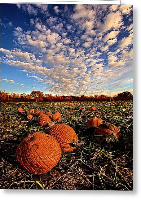 Pumpkins Greeting Cards - The Survivors Greeting Card by Phil Koch