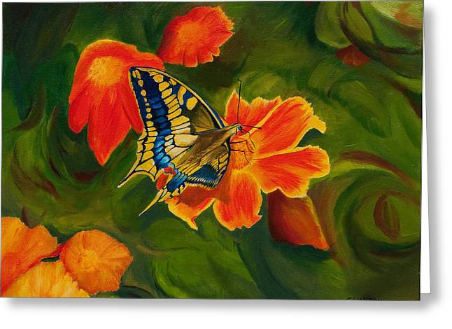 The Swallowtail Butterfly Greeting Card by Phillip Compton