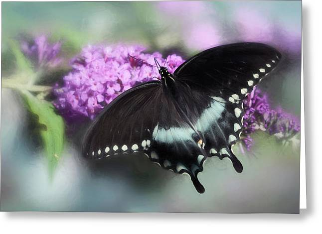 Swallow Tail Greeting Cards - The Swallowtail Greeting Card by Lori Deiter