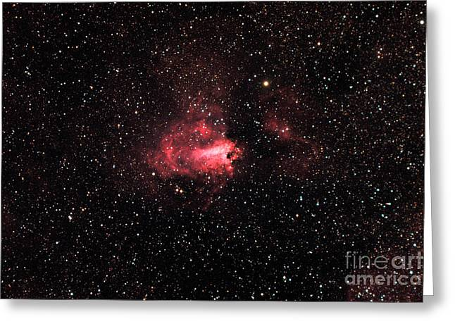 The Swanomega Nebula Greeting Card by John Chumack