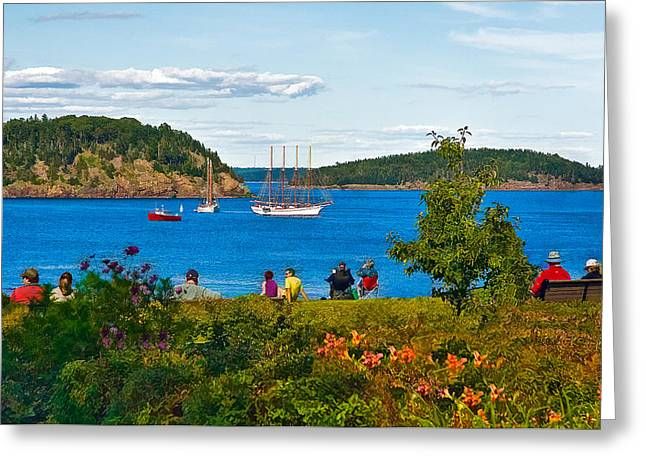 Tall Ships On Water Greeting Cards - Watching the Tall Ships in Bar Harbor Greeting Card by Ginger Wakem