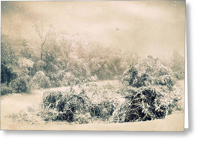 Winter Landscape Digital Greeting Cards - The Tempest Greeting Card by Jessica Jenney