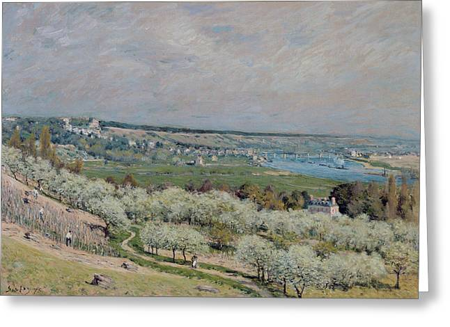 Signature Greeting Cards - The Terrace at Saint Germain Greeting Card by Alfred Sisley
