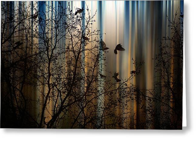 Marek Czaja Greeting Cards - The Thorn Birds Greeting Card by Marek Czaja