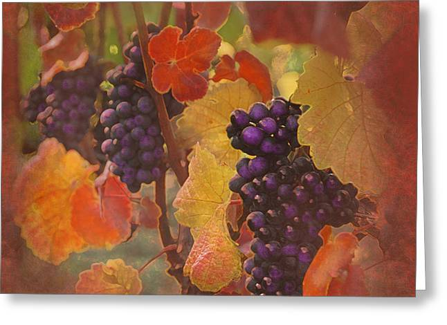 Purple Grapes Greeting Cards - The Thought of Drink Greeting Card by Jeff Burgess