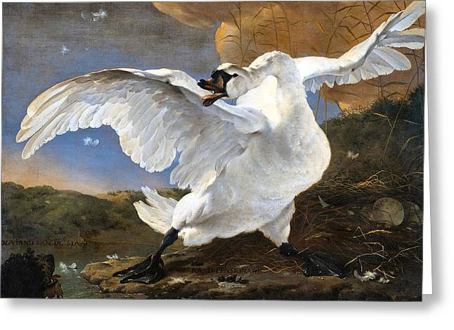 Large Birds Greeting Cards - The Threatened Swan Greeting Card by Jan Asselyn