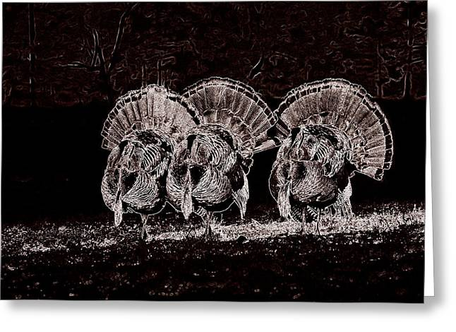 Hunting Bird Jewelry Greeting Cards - The Three Amigos Greeting Card by Todd Hostetter