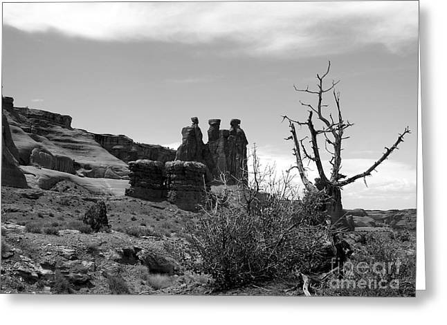 Arches National Park Pine Trees Greeting Cards - The Three Gossips Greeting Card by Mel Steinhauer