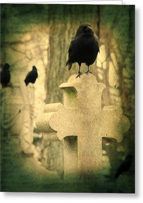 Birds In Graveyard Greeting Cards - The Three Graveyard Crows Greeting Card by Gothicolors Donna Snyder