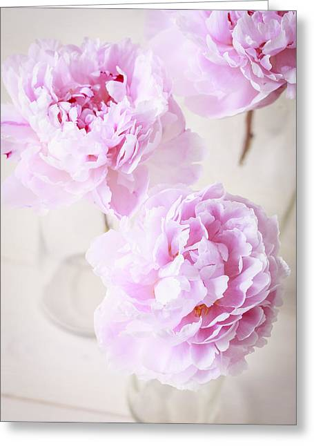Glass Vase Greeting Cards - The three pink peony flowers  Greeting Card by Roberto Pastrovicchio