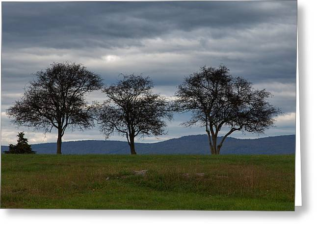 Shed Greeting Cards - The Three Sentinels Greeting Card by John Bailey
