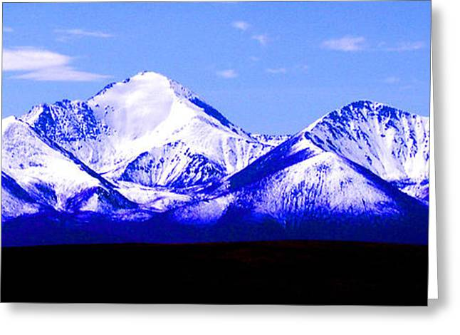 Snow Tree Prints Greeting Cards - The Tian Shan Greeting Card by PlusO FineArt